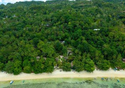 Dschungel meets Reef
