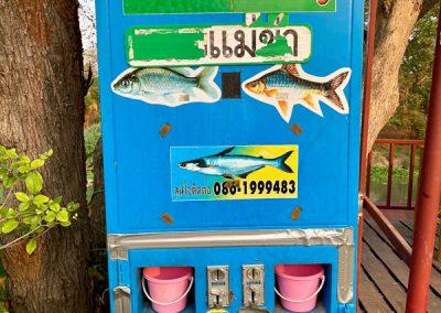 Fischfutterautomat