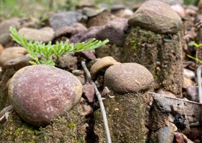 Miniatur-Felsen